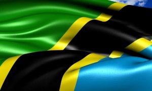 Tough New Election Reporting Rules for Tanzania's Bloggers