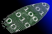 Civil Society Organisations Call For a Full Integration of Human Rights in The Deployment of Digital Identification Systems
